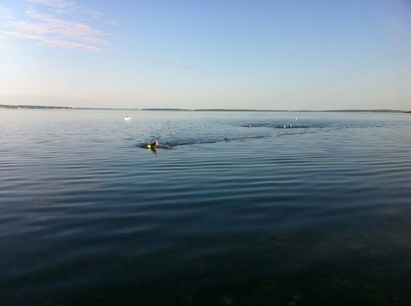 triathlon suits womens canada