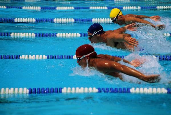 3 person triathlon relay